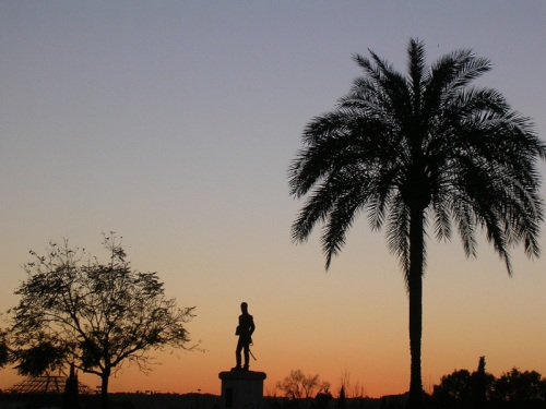 palmera y estatua.