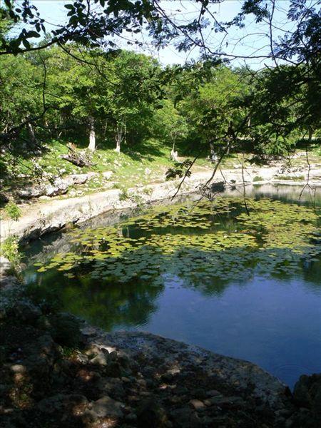 09_10_31_Cenote_Xlakah_foto_martin_javier