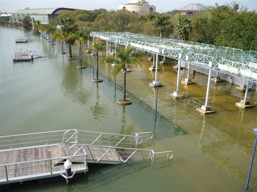 Inundaci n fotos de hoy for Jardin americano sevilla