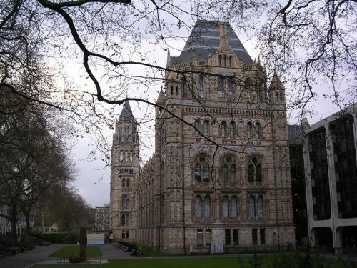 Fotos del Museo de Historia Natural en Londres - Inglaterra. Foto por martin_javier