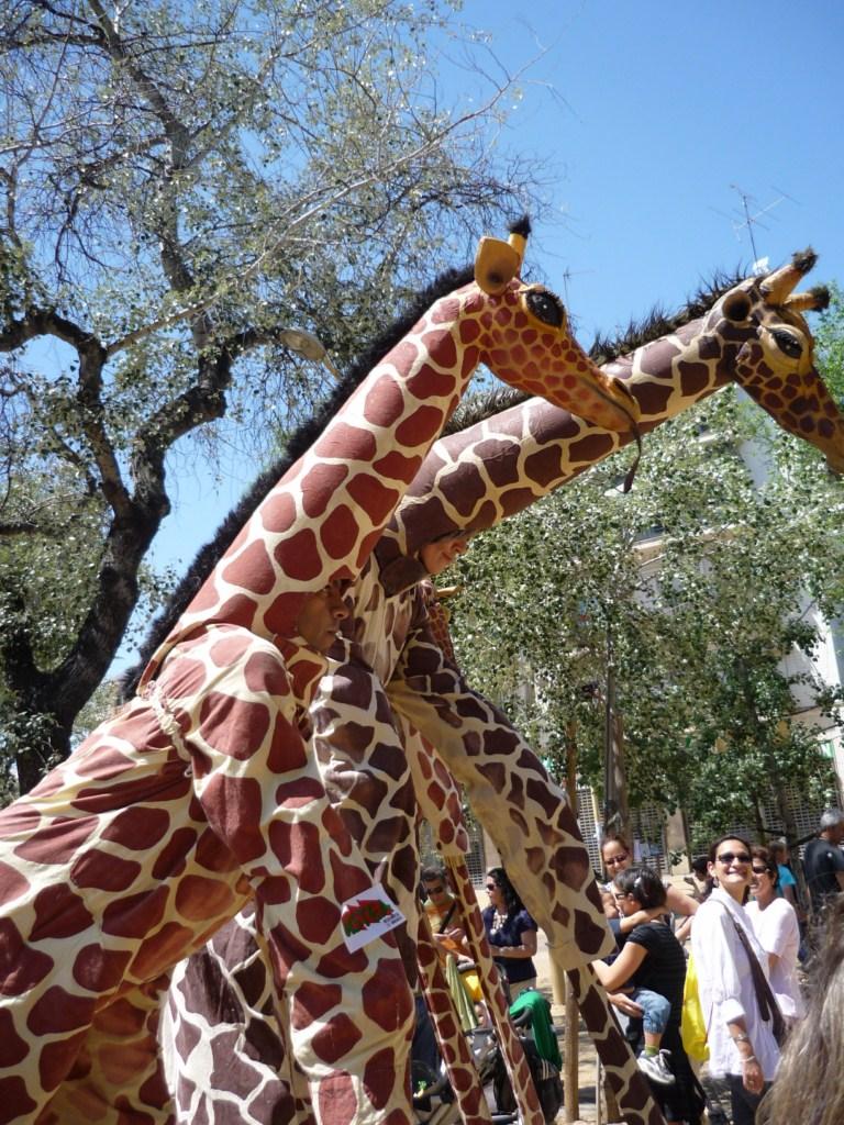 Fotos del espect culo jirafas de la compa a for Espectaculos en sevilla hoy
