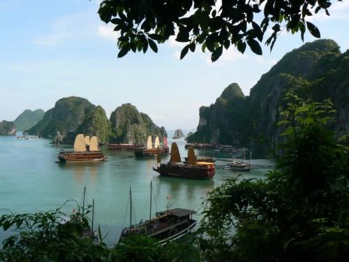 Fotos de barcos, Juncos de madera en la Bahía de Halong - Vietnam. Foto por martin_javier