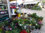 12_01_28_fachada-plaza-flores-cadiz_foto_martin_javier (4)