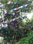 12_05_07_swayambhunath_foto_martin_javier (3)